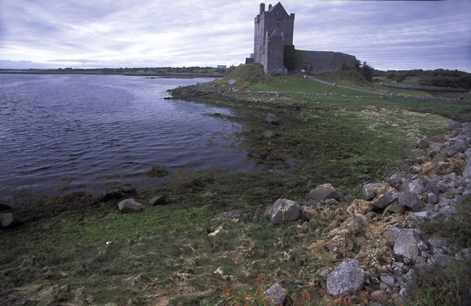 Dongory Castle (Dunguaire Castle)