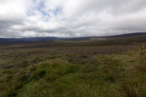 Wicklow Mountains NP II