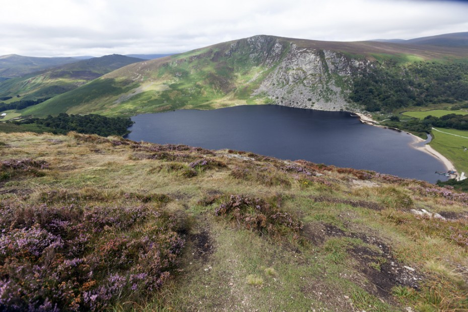 Wicklow Mountains NP I