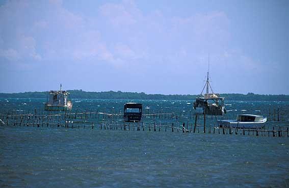Puerto Esperanza Cuba Pinar Del Rio