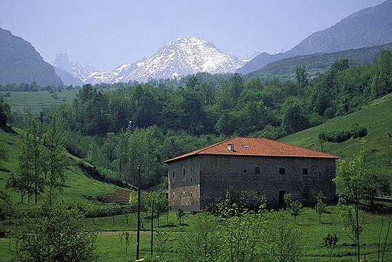 Calli's schedule Asturias1
