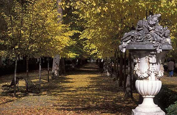 Aranjuez jard n del pr cipe madrid pictures fotos de for Restaurante jardin del principe en aranjuez